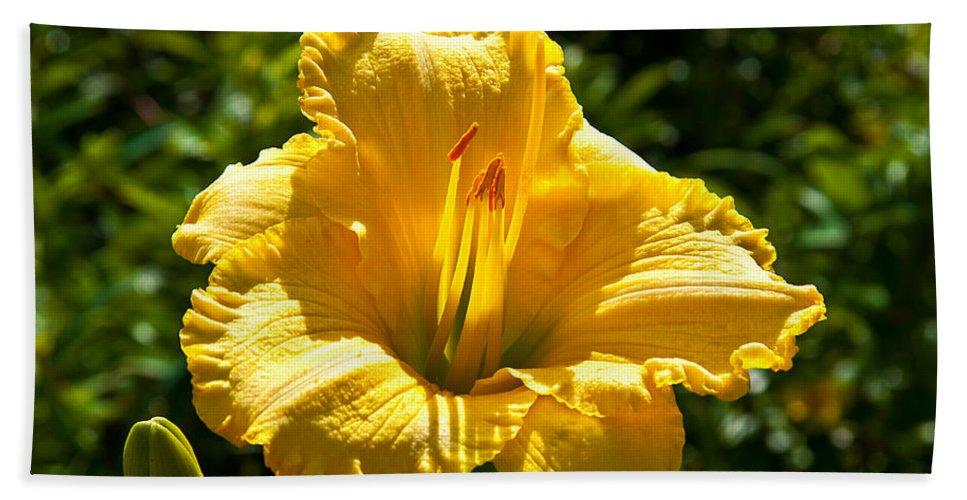 Hibiscus Bath Sheet featuring the photograph Yellow Hibiscus by Darren Burton