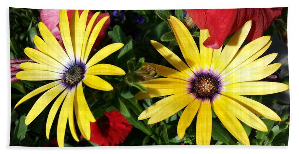 Yellow Bath Sheet featuring the photograph Yellow Punch by Caryl J Bohn