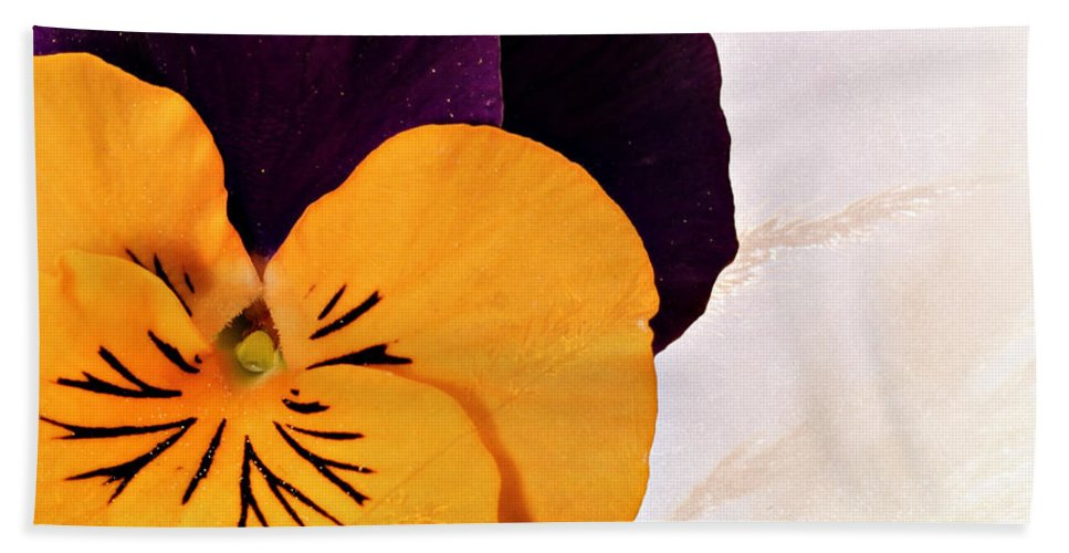 Beautiful Bath Sheet featuring the photograph Yellow Purple Pansy by Paul Fell
