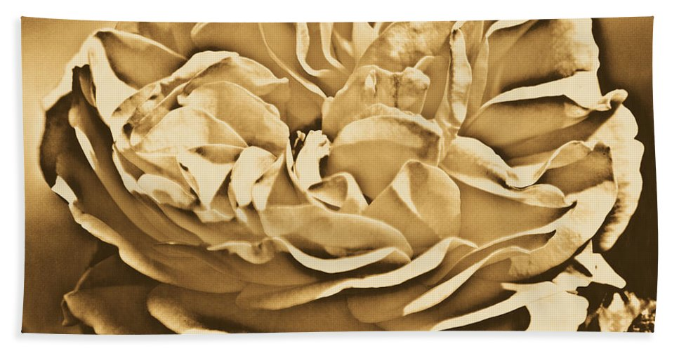 Travelpixpro Bath Towel featuring the digital art Yellow Rose Of Texas Floral Decor Square Format Rustic Digital Art by Shawn O'Brien