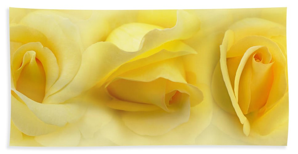 Rose Hand Towel featuring the photograph Yellow Roses Triptych Panel by Jennie Marie Schell
