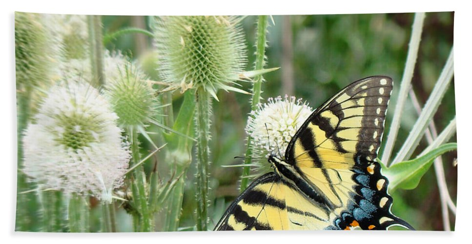 Yellow Swallowtail Butterfly Hand Towel featuring the photograph Yellow Swallowtail Butterfly by Phyllis Taylor