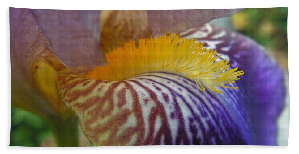 Bearded Iris Bath Sheet featuring the photograph Yellow Tuft by Cheryl Hoyle