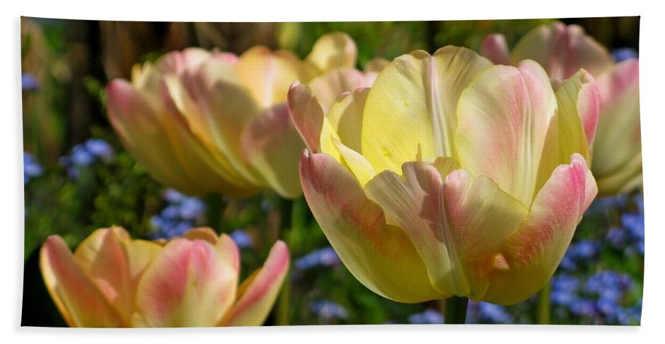 Tulips Bath Sheet featuring the photograph Yellow Tulips by Lena Photo Art