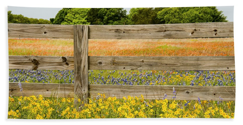 Williamson County Texas Wildflower Wildflowers Nodding Bur Marigold Marigolds Diden Cernua Bluebonnet Bluebonnets Lupin Lupins Flower Flowers Spring Color Colors Fence Fences Indian Paintbrush Castilleja Indivisa Landscape Landscapes Hand Towel featuring the photograph Yellows Plus by Bob Phillips