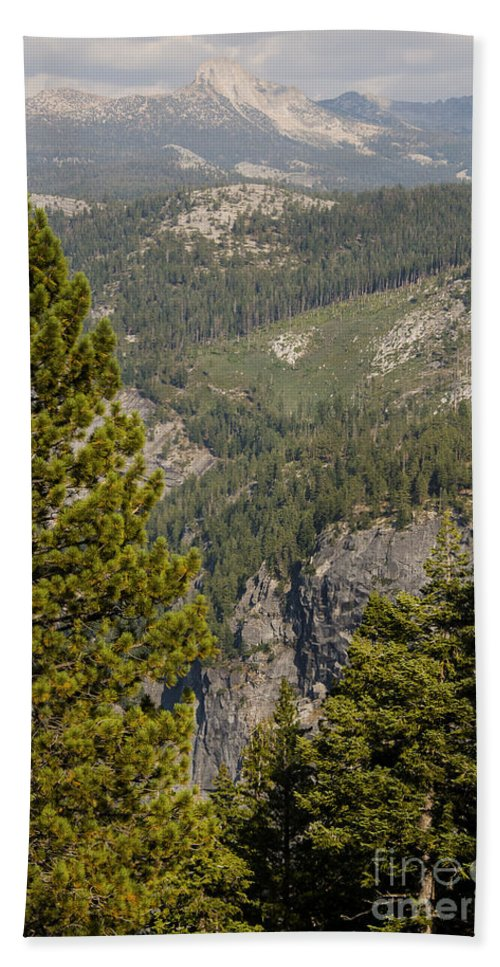 Tree Trees Forest Forests Meadow Meadows Mountain Mountains Yosemite National Park California Landscape Landscapes Bath Sheet featuring the photograph Yosemite Mountain High by Bob Phillips