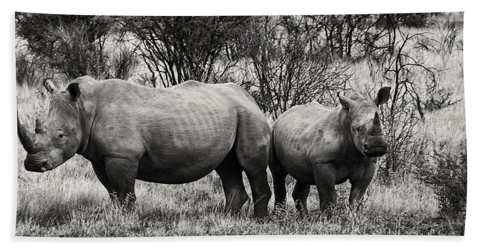 Rhinos Bath Sheet featuring the photograph You Watch My Back And I Will Do The Same For You V2 by Douglas Barnard
