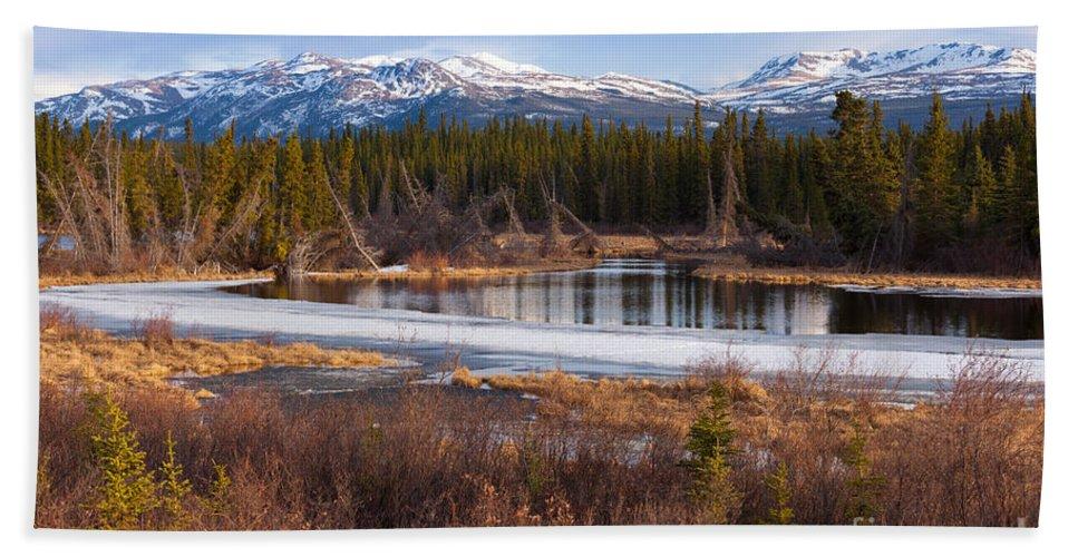 Arctic Hand Towel featuring the photograph Yukon Taiga Wetland Marsh Spring Thaw Canada by Stephan Pietzko