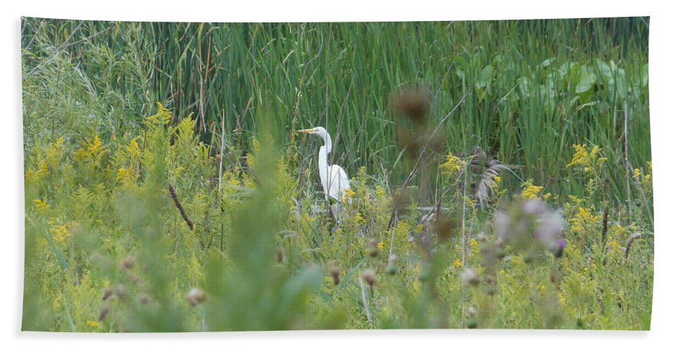 Nature Hand Towel featuring the photograph Zen Egret by Zully Bartley