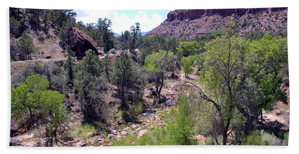 Zion National Park Bath Sheet featuring the photograph Zion National Park 1 by Nancy L Marshall