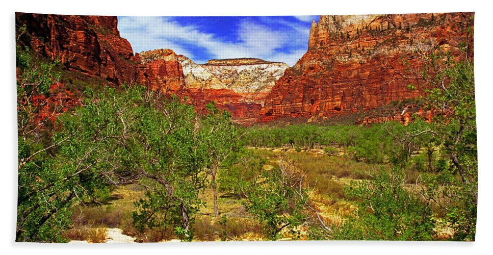 Utah Hand Towel featuring the photograph Zion Park Canyon by Rich Walter