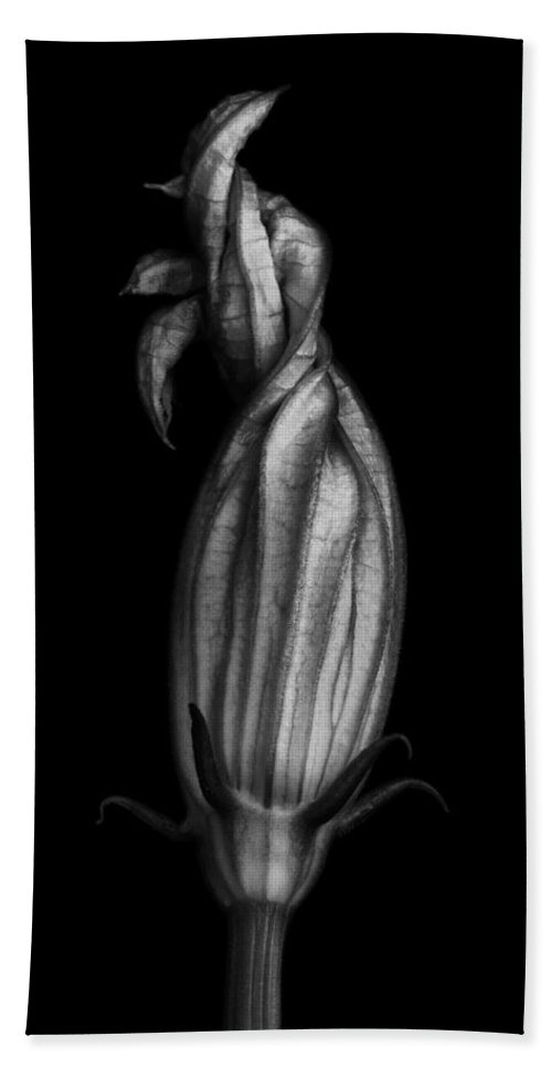 Zucchini Bath Sheet featuring the photograph Zucchini Flower In Black And White by Robert Woodward