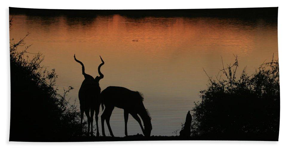 Karen Zuk Rosenblatt Art And Photography Bath Sheet featuring the photograph South African Sunset by Karen Zuk Rosenblatt