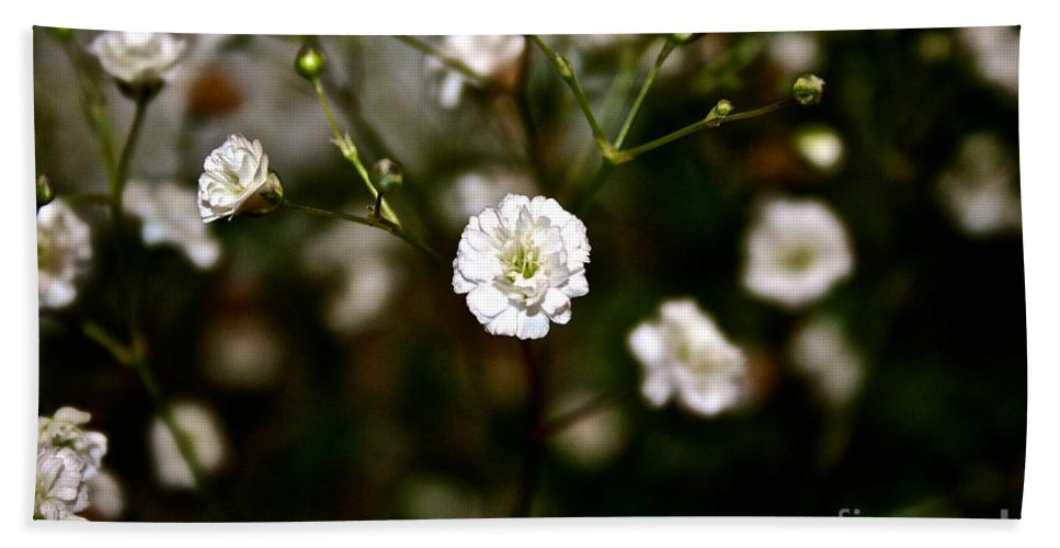 White Flower Bath Sheet featuring the photograph White by Susan Herber