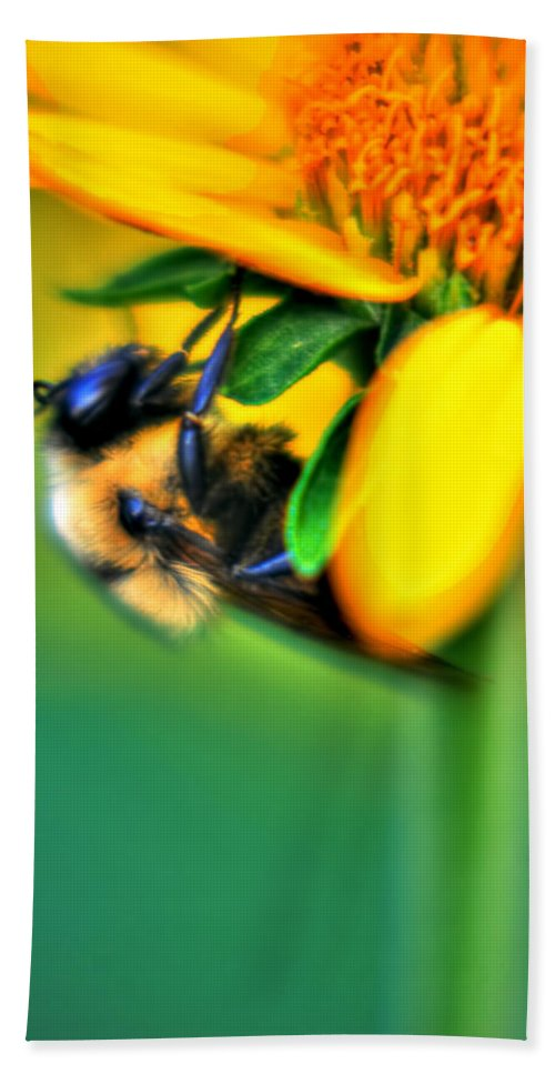 Bath Sheet featuring the photograph 001 Sleeping Bee by Michael Frank Jr