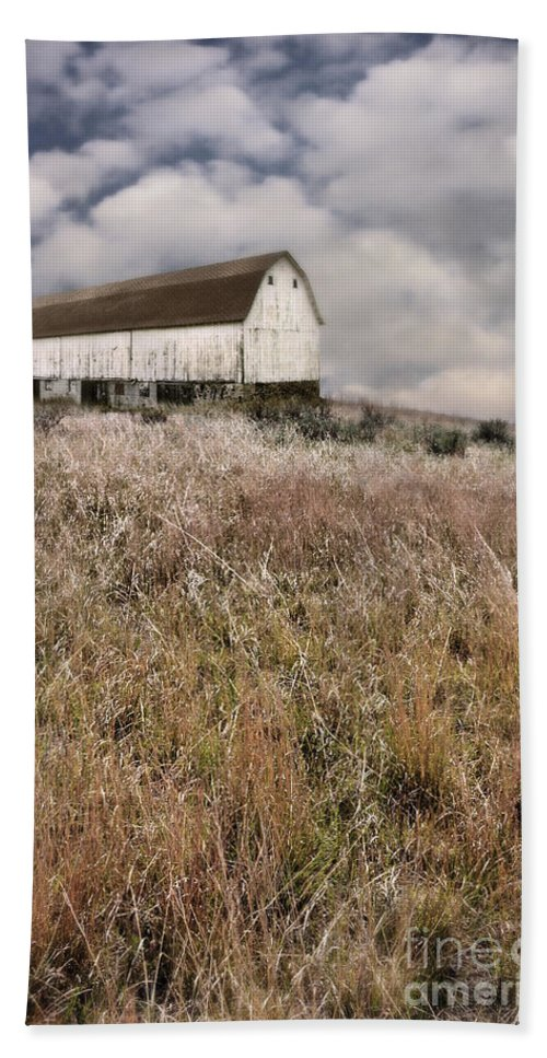 Barn Hand Towel featuring the photograph Abandoned Barn by Jill Battaglia