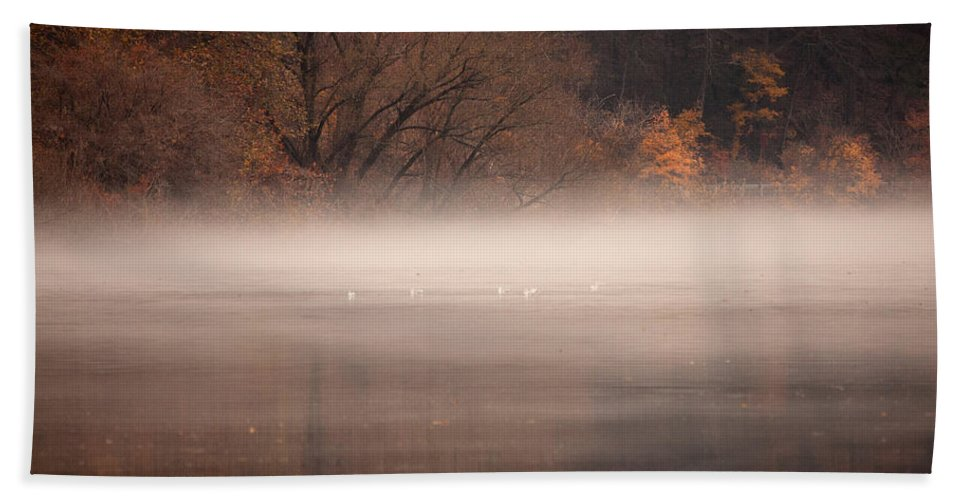 Fog Bath Sheet featuring the photograph As The Fog Lifts by Karol Livote