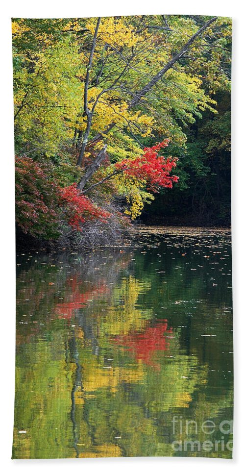 Autumn Bath Sheet featuring the photograph Autumn Tree Reflections by Mike Nellums
