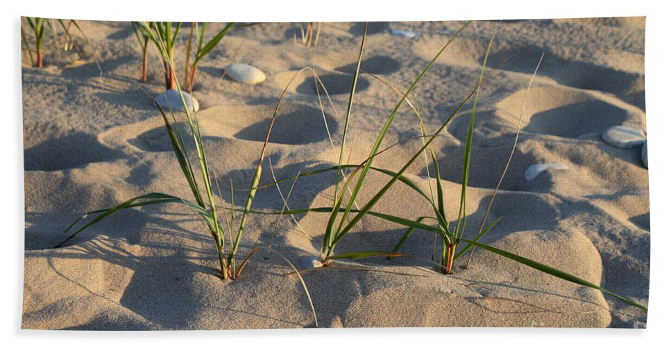 Sand Hand Towel featuring the photograph Beach Grass by Ted Kinsman