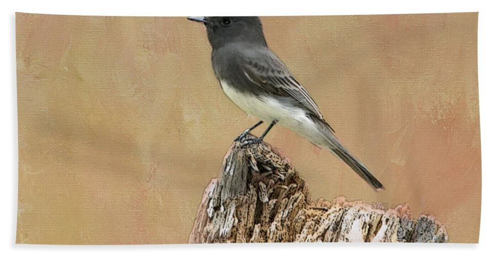 Black Phoebe Hand Towel featuring the photograph Black Phoebe by Betty LaRue