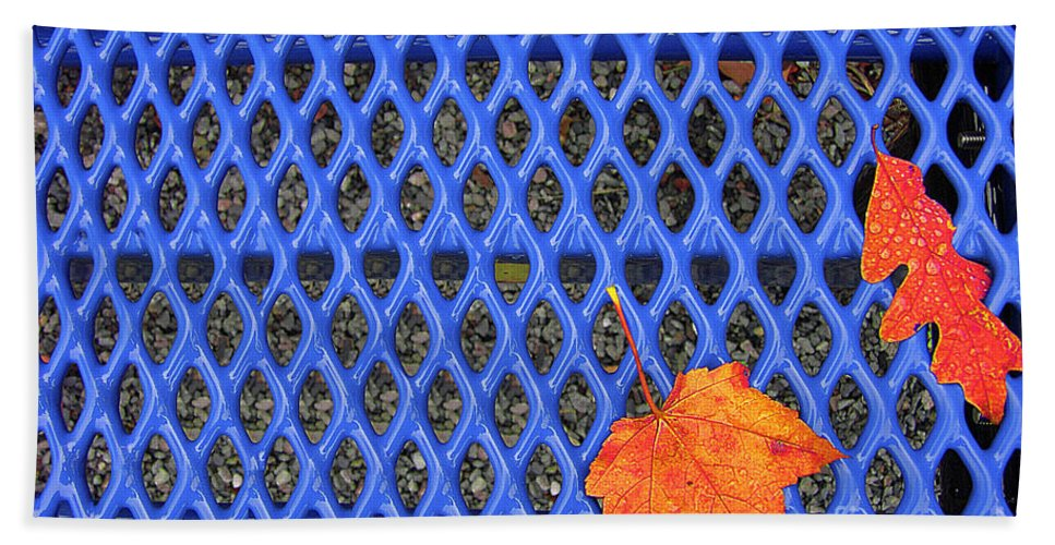 Bench Bath Sheet featuring the photograph Blue Bench And Autumn Leaves by Mike Nellums