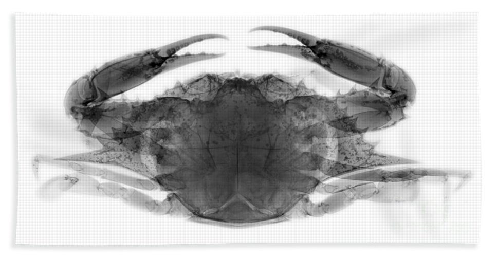 Xray Hand Towel featuring the photograph Blue Crab by Ted Kinsman