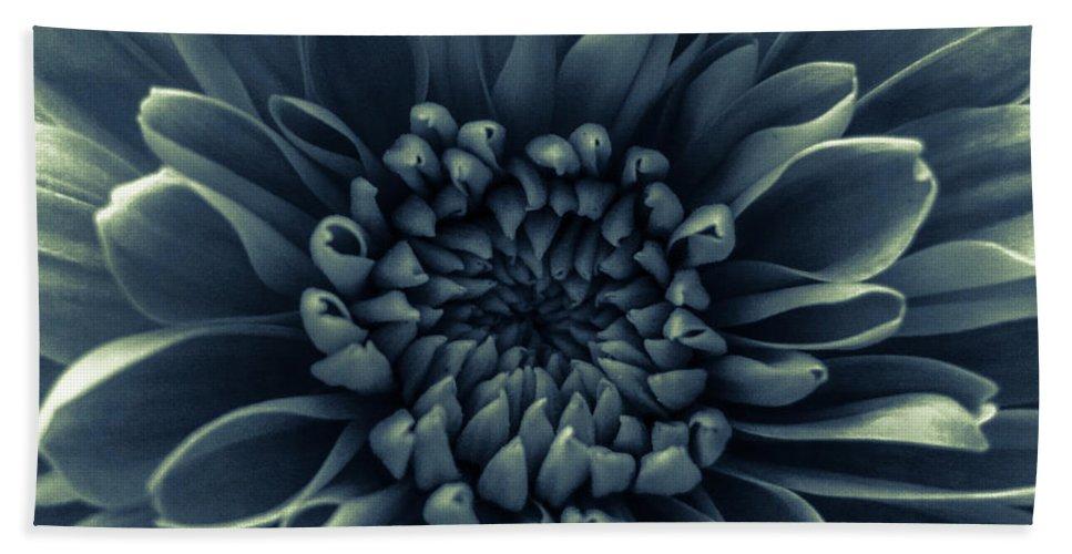 Silver Flower Bath Sheet featuring the photograph Blue Flower by Dawn OConnor