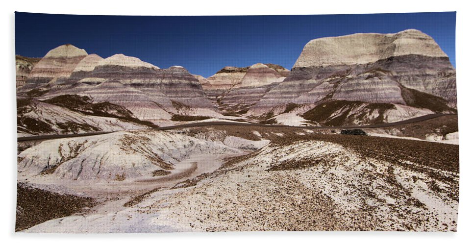 Petrified Forest National Park Bath Sheet featuring the photograph Blue Mesa Landscape by Adam Jewell