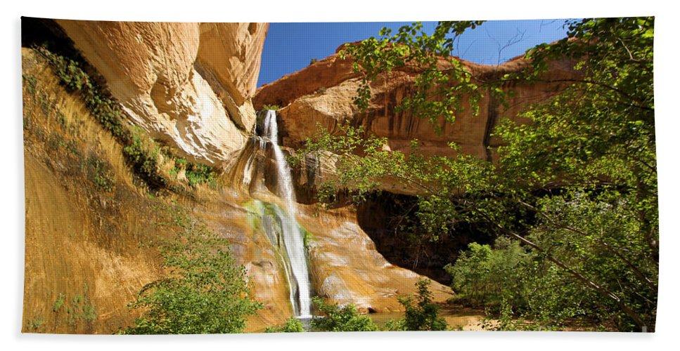 Lower Calf Creek Falls Hand Towel featuring the photograph Calf Creek Falls Canyon by Adam Jewell