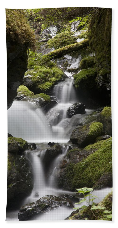 Mp Hand Towel featuring the photograph Cascading Creek In Temperate Rainforest by Matthias Breiter