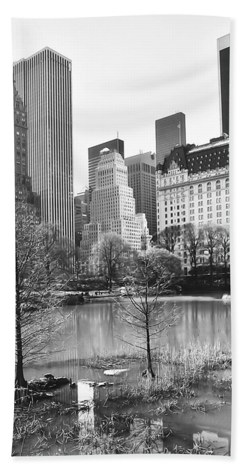America Hand Towel featuring the photograph Central Park by Svetlana Sewell