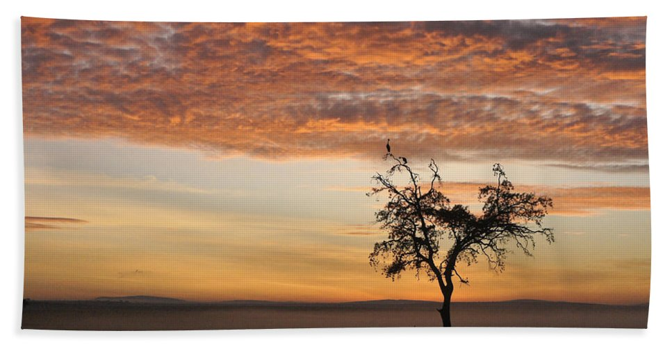 Africa Hand Towel featuring the photograph Crowned Cranes At Sunrise by Michele Burgess