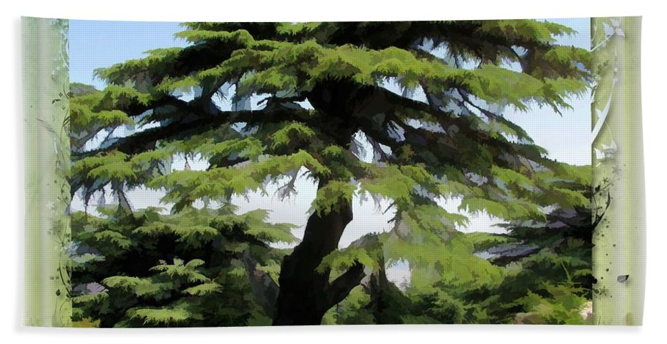 Tree Hand Towel featuring the photograph Do-00512 Cedar Forest by Digital Oil