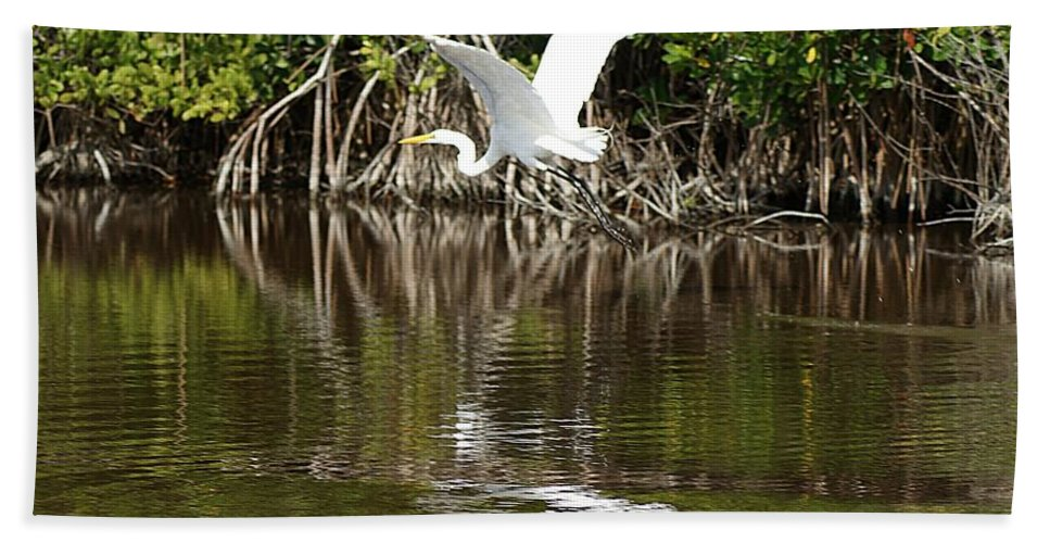Egret Bath Sheet featuring the photograph Egret In Flight by Joe Faherty