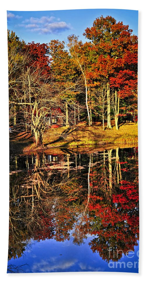Lake Hand Towel featuring the photograph Fall Forest Reflections by Elena Elisseeva