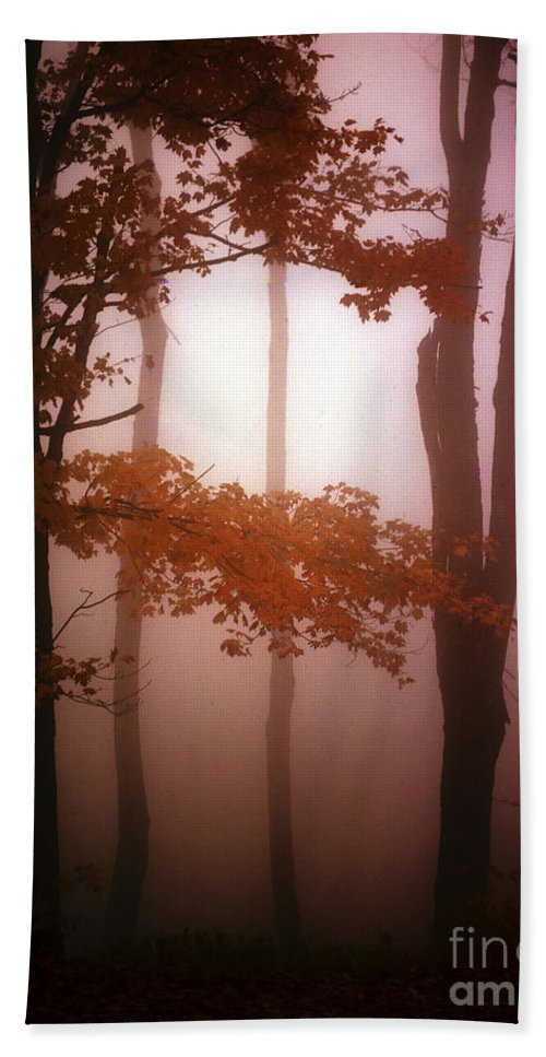Foggy Bath Sheet featuring the photograph Foggy Misty Trees by Mike Nellums