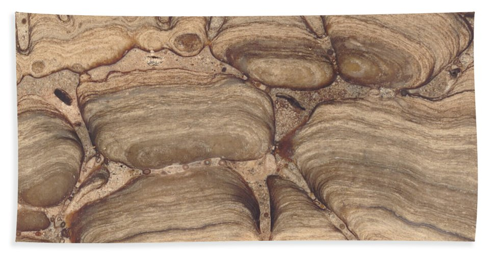 Stromatolite Hand Towel featuring the Fossil Stromatolite by Ted Kinsman