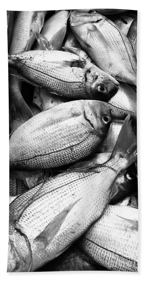 Fish Hand Towel featuring the photograph Fresh Fish by Gaspar Avila