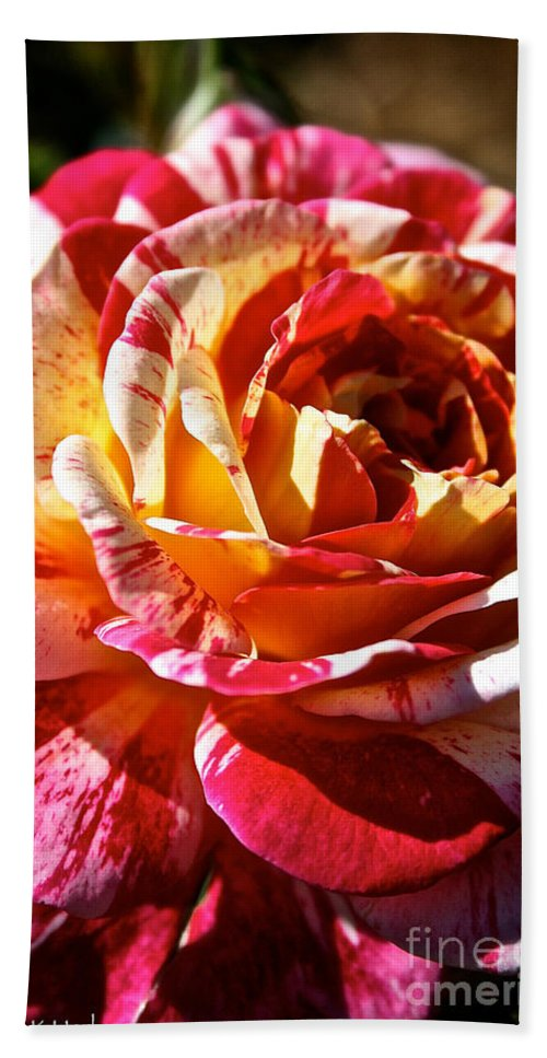 Plant Hand Towel featuring the photograph Full Bloom by Susan Herber