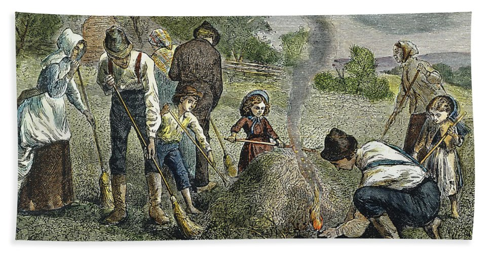 1875 Hand Towel featuring the photograph Grasshopper Plague, 1875 by Granger