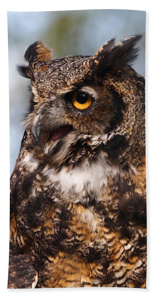 Doug Lloyd Hand Towel featuring the photograph Great Horned Owl by Doug Lloyd