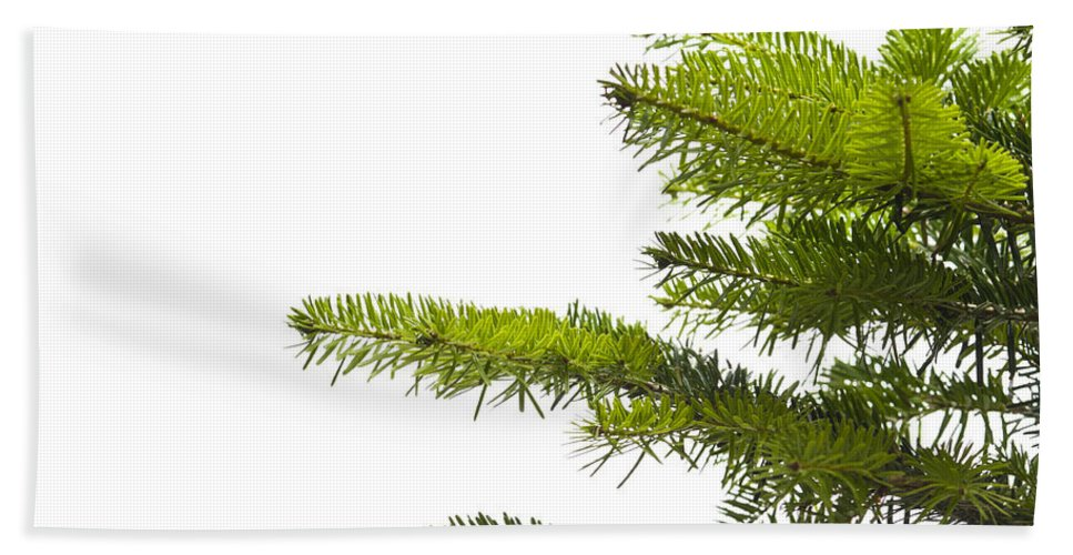 Background Bath Sheet featuring the photograph Green Branches Of A Christmas Tree by U Schade