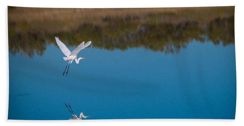 Fall Color Bath Sheet featuring the photograph Herron 5 by Sean Wray