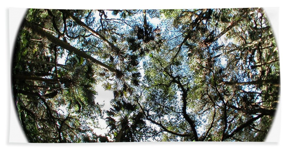 Green Bath Sheet featuring the photograph Looking Up by Peggy Starks