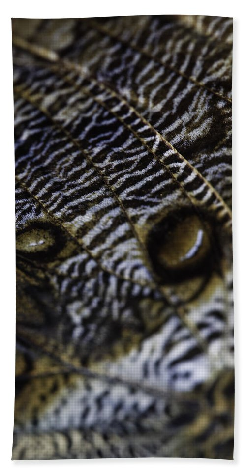 Mournful Owl Bath Sheet featuring the photograph Mournful Owl Butterfly by Perla Copernik