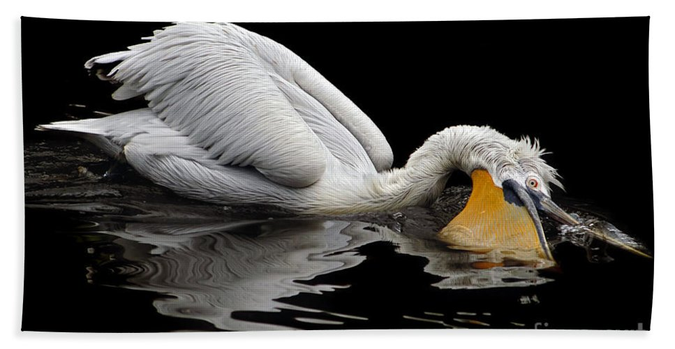 Dalmatian Pelican Hand Towel featuring the photograph Oral Hygiene by Michal Boubin