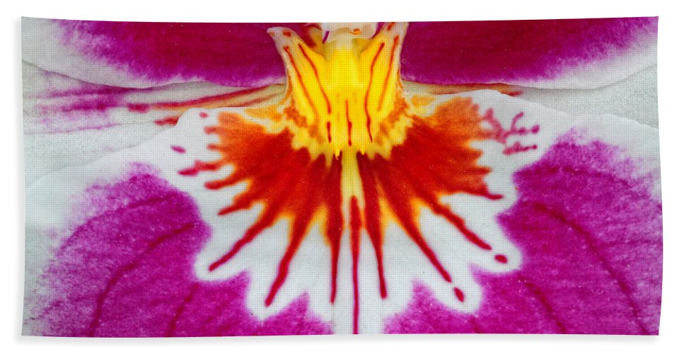 Orchid Bath Sheet featuring the photograph Orchid Closeup by Dave Mills