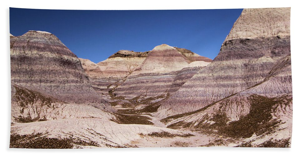Petrified Forest National Park Bath Sheet featuring the photograph Petrified Forest Blue Mesa by Adam Jewell