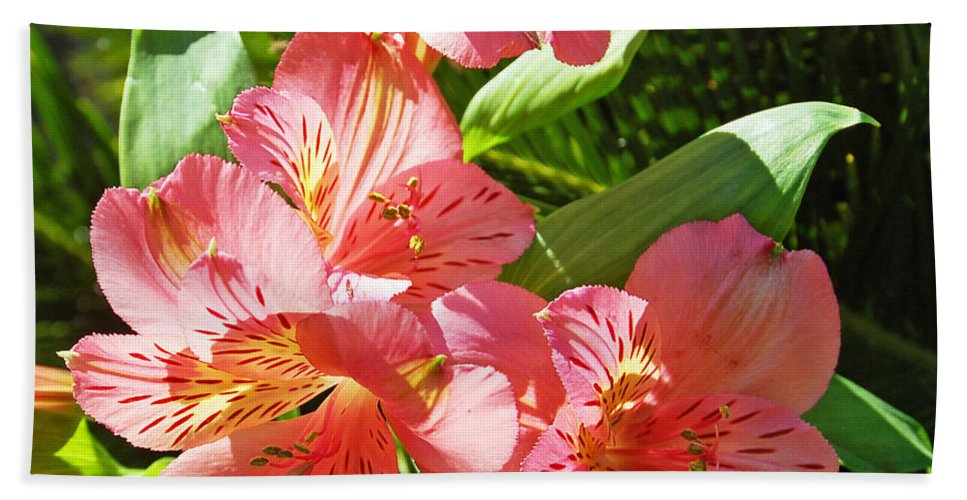 Flower Hand Towel featuring the photograph Pink And Green by Aimee L Maher ALM GALLERY