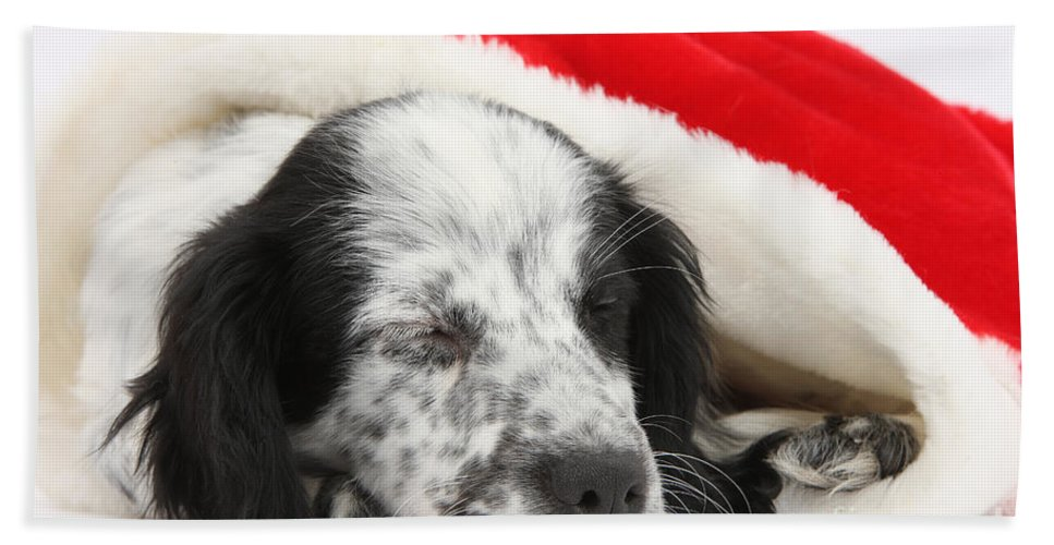 Nature Hand Towel featuring the Puppy Sleeping In Christmas Hat by Mark Taylor
